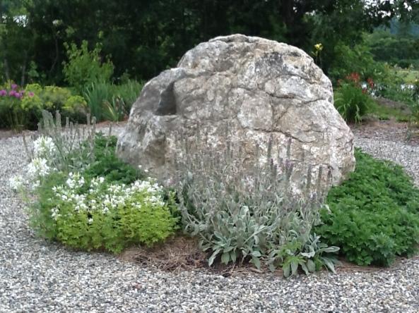 memorila garden 07 14 rock and greens