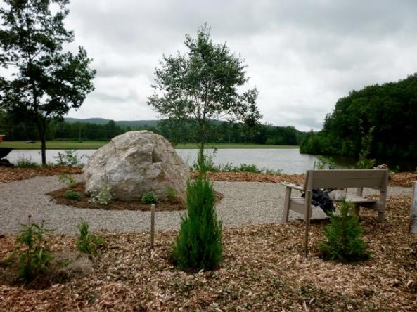 garden with pond behind